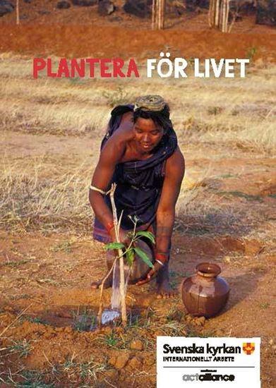 Bild på Plantera för livet, Trädplanteringskort med kuvert