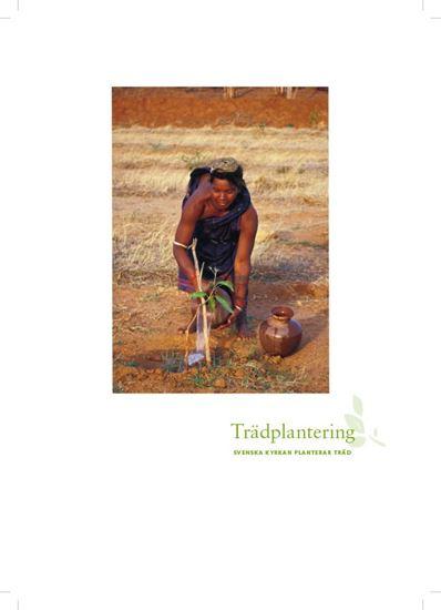Bild på Hyllningsblad, Trädplantering, Internationellt arbete