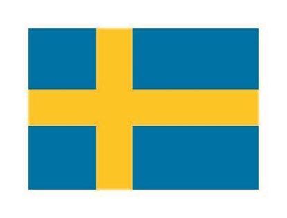 Bild på Sverige-tatuering