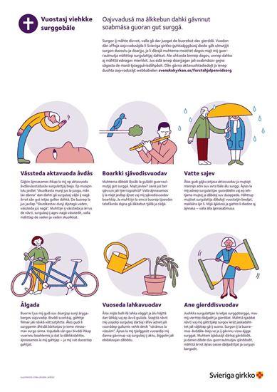 Bild på Första hjälpen vid sorg. Affisch på LULESAMISKA. PDF.